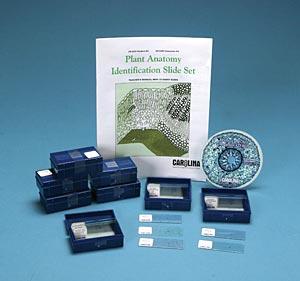 algae identification lab reference manual